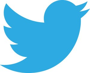 new-twitter-logo