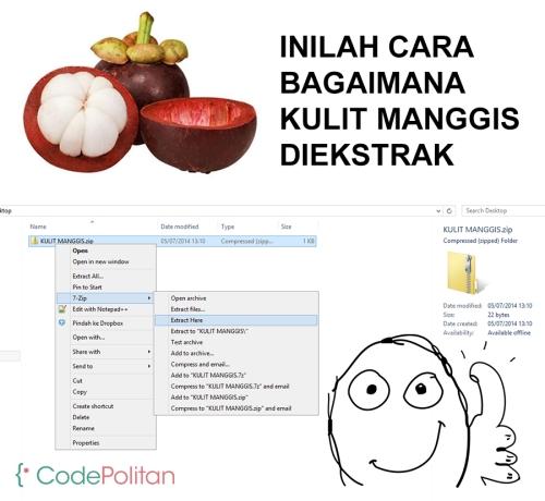 cara_ekstrak_kulit_manggis